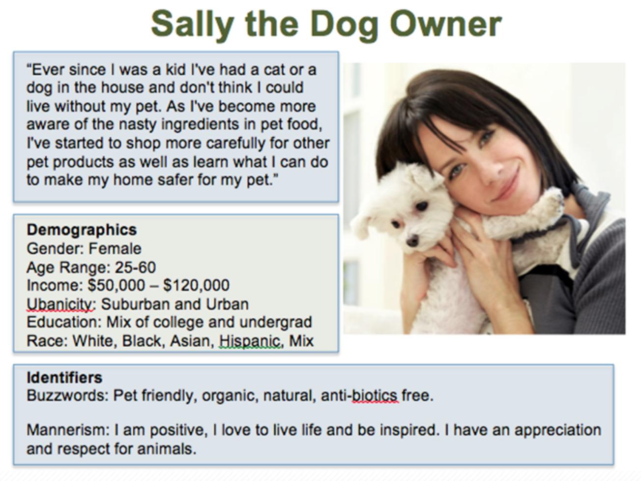description of buyer persona
