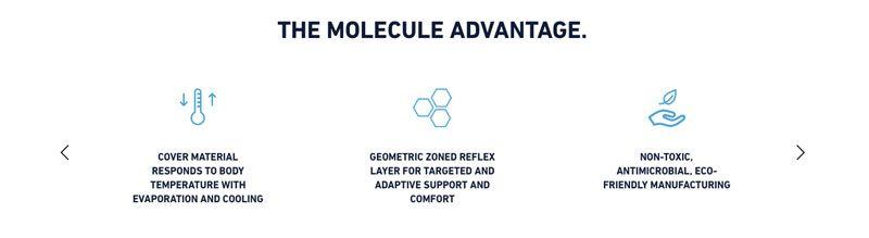 fomo-molecule-about